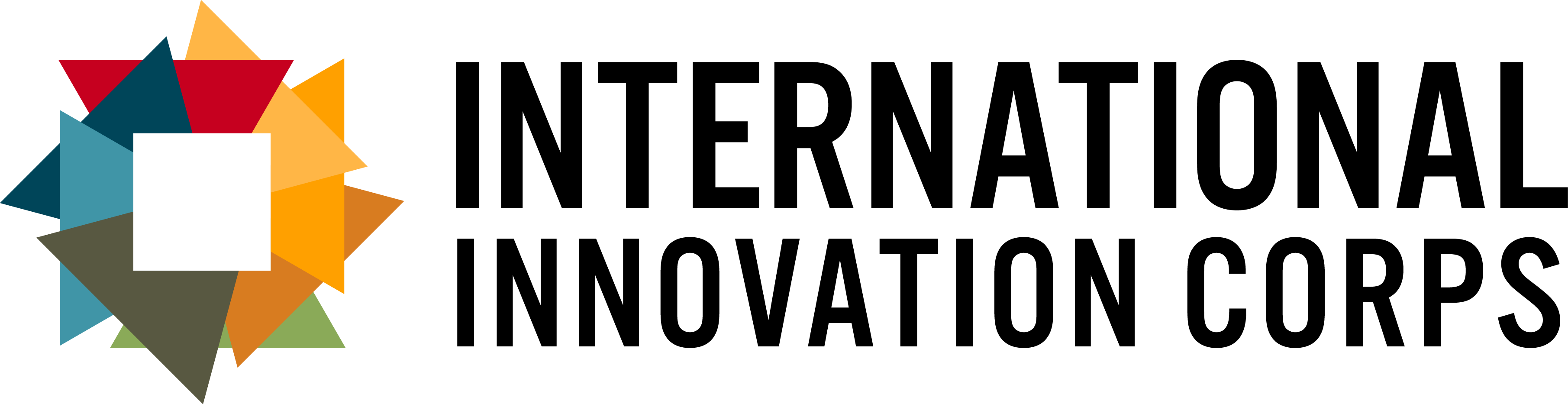 International Innovation Corps Logo